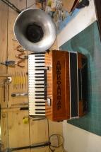 Amfifanfarophone (14)