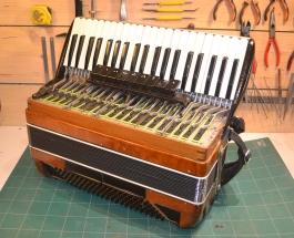 Amfifanfarophone (2)